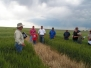 2010 Wheat Field Days (June)