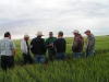 wheat-field-days-2010-073