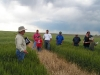 wheat-field-days-2010