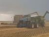 Harvest 2010 (11)